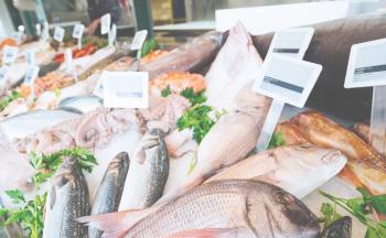 魚 肉 八百屋