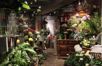 東京市内 花屋