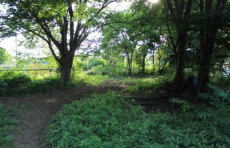 埼玉県 緑地