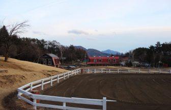 関東 アメリカンファーム(牧場)