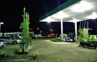 千葉県 ガソリンスタンド