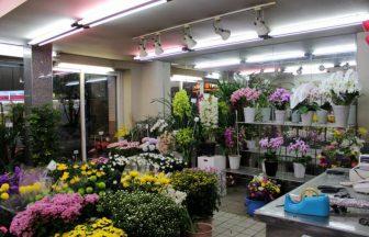23区内 花屋
