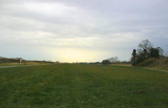 関東 牧草地