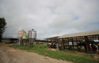 長野県 牧場